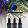 news_Peacock_Gelee
