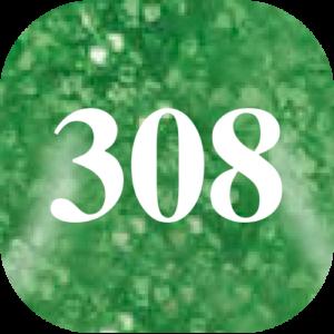 G-308